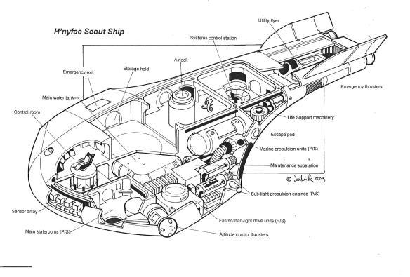 hnife ship cutaway